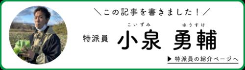 小泉特派員が記事を書きました